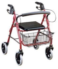 Shopper - Quad Allum