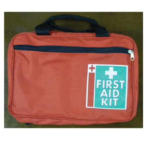 Home Essential First Aid Kit In Carry Bag