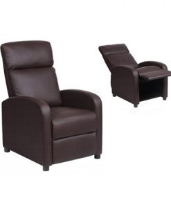 Reclining Chair Model REC BD 001